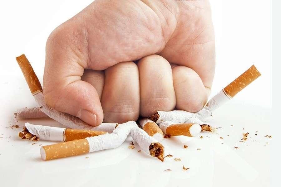 Табачные изделия и школа сигареты benson and hedges купить в спб